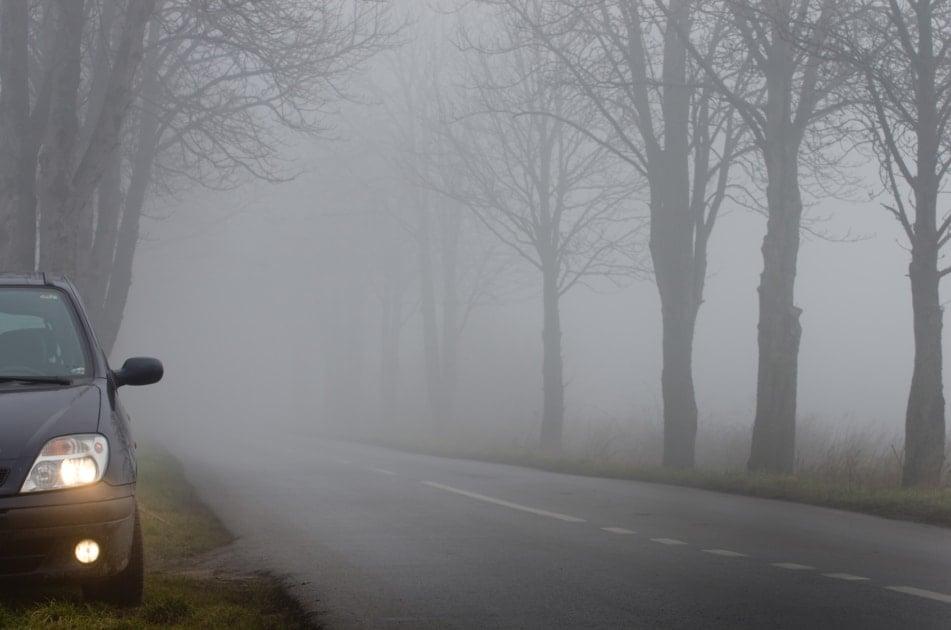 Fog - Weather