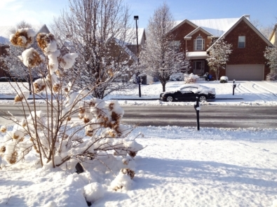 The Great Christmas Eve Snow Storm of 2004 featured image