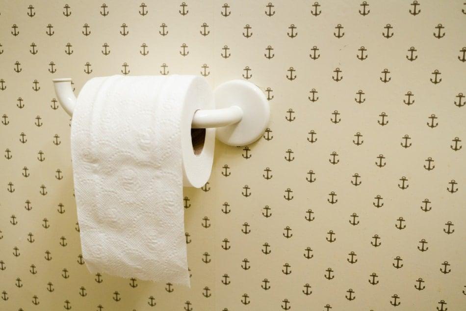 Toilet Roll Hanging Over in Nice Bathroom