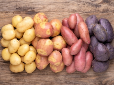 Grow Your Own Potatoes – It's Easy! featured image