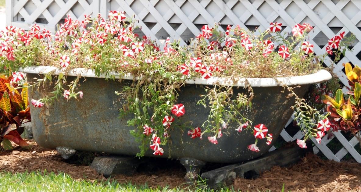 Water garden - Hot Tub