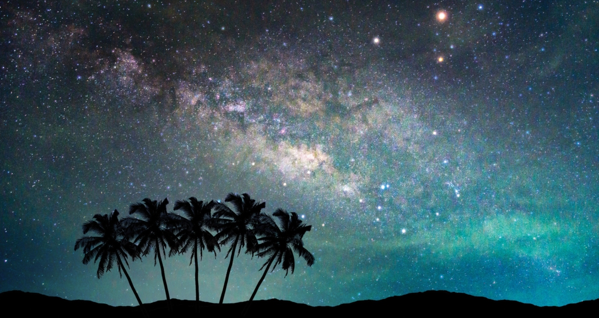 Milky Way in night sky with silhouette of palm trees.