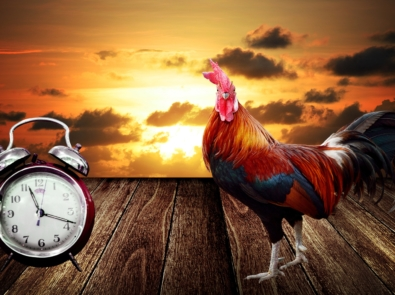 Daylight Saving for 2021: When Does the Time Change? featured image