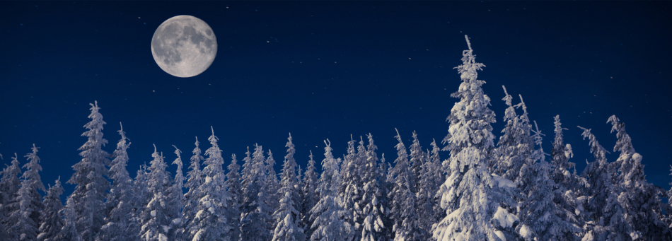 Full moon appearing over a forest covered in snow during winter.