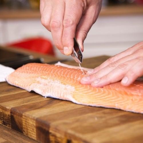 Fish Odor image