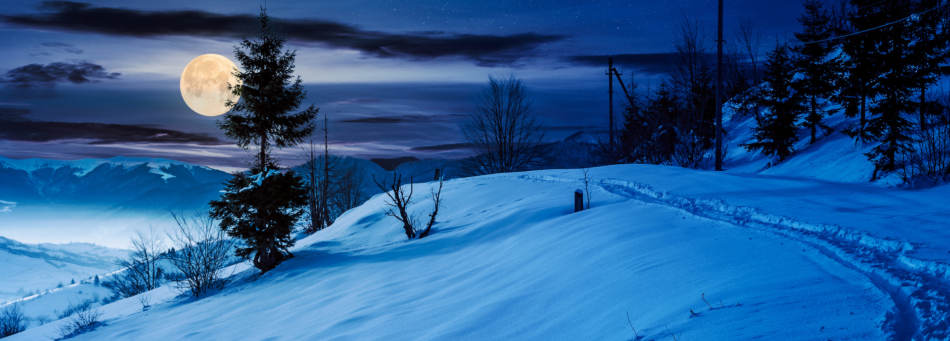 A full moon appears over a winter wonderland at night.