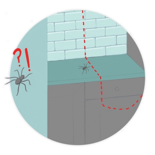 Spiders Be Gone! image