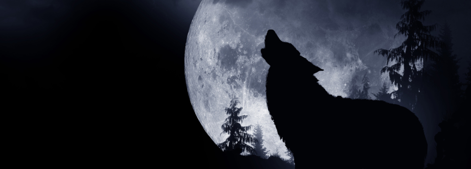 Silhouette of a wolf howling in front of a full moon.