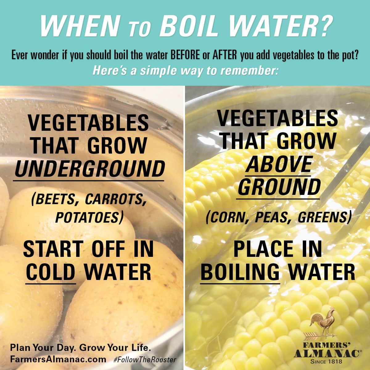 boil water vegetables