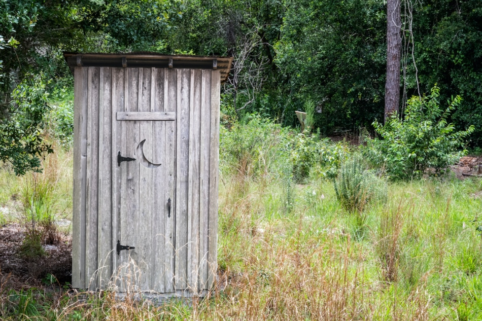 Old outhouse with trees and bushes in the background.