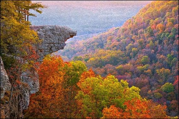 Fall leaves, Arkansas Ozarks