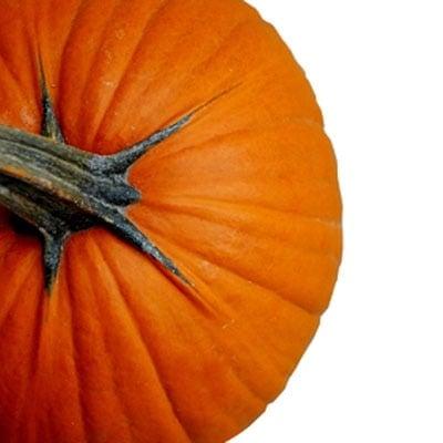 Preserving Your Halloween Pumpkin image