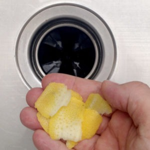 Smelly Garbage Disposal?image preview