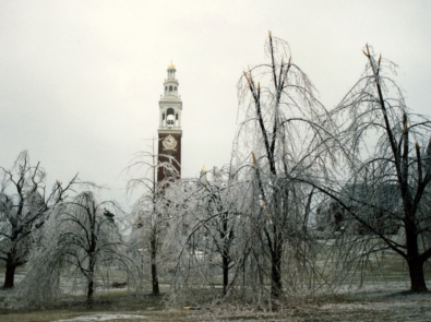 Remembering The Great Ice Storm of '98 featured image