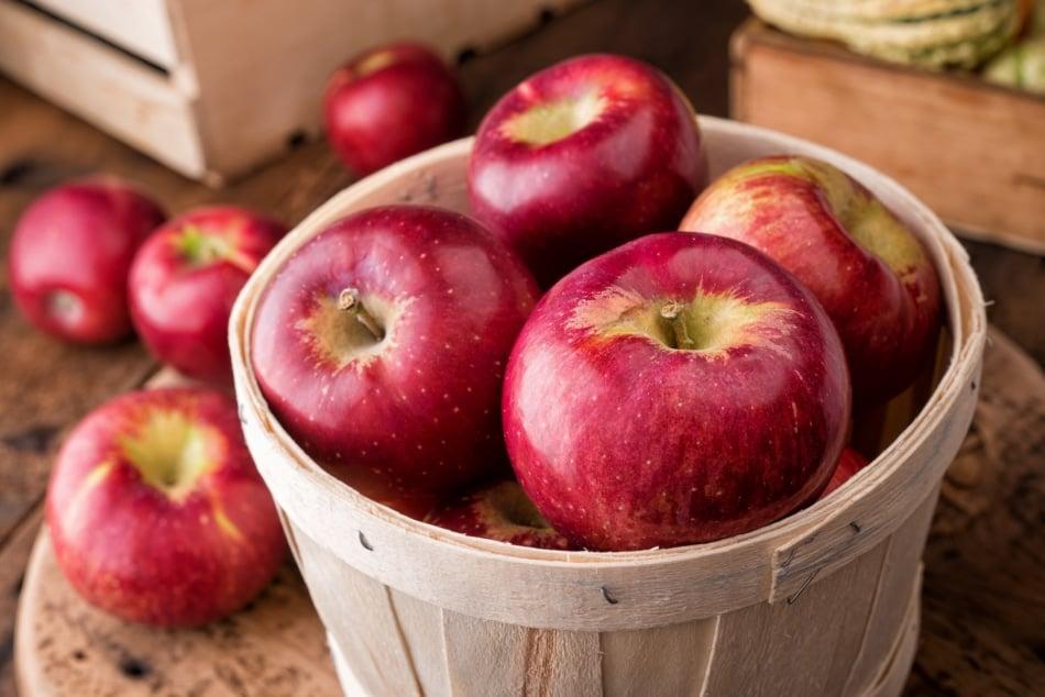Cortland apples in a wicker basket