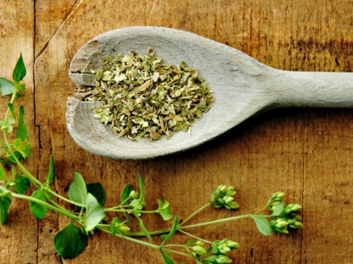 Tips For Harvesting and Drying Your Own Herbs featured image