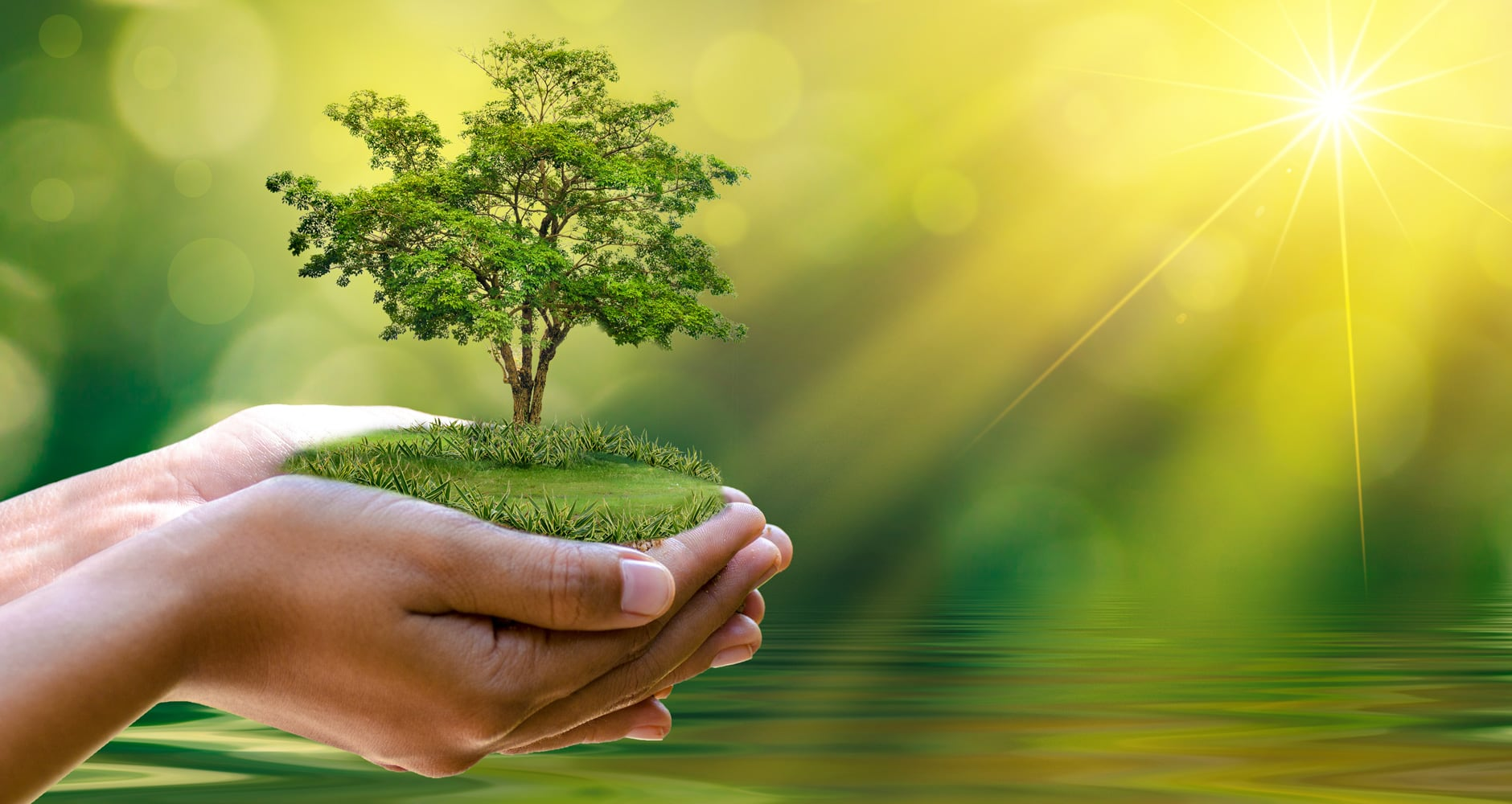 Earth Day 2021: What and When is Earth Day? - Farmers' Almanac