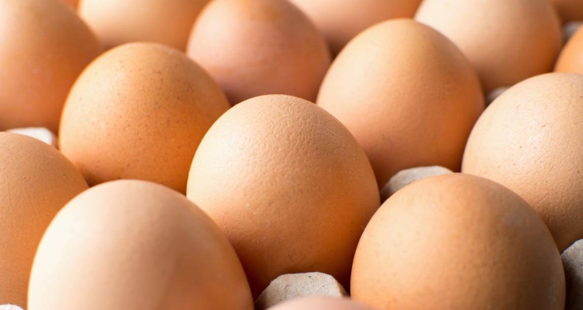 Chicken - Egg