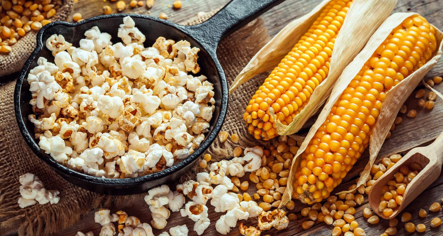 Growing Popcorn It S Easier Than You Think Farmers Almanac