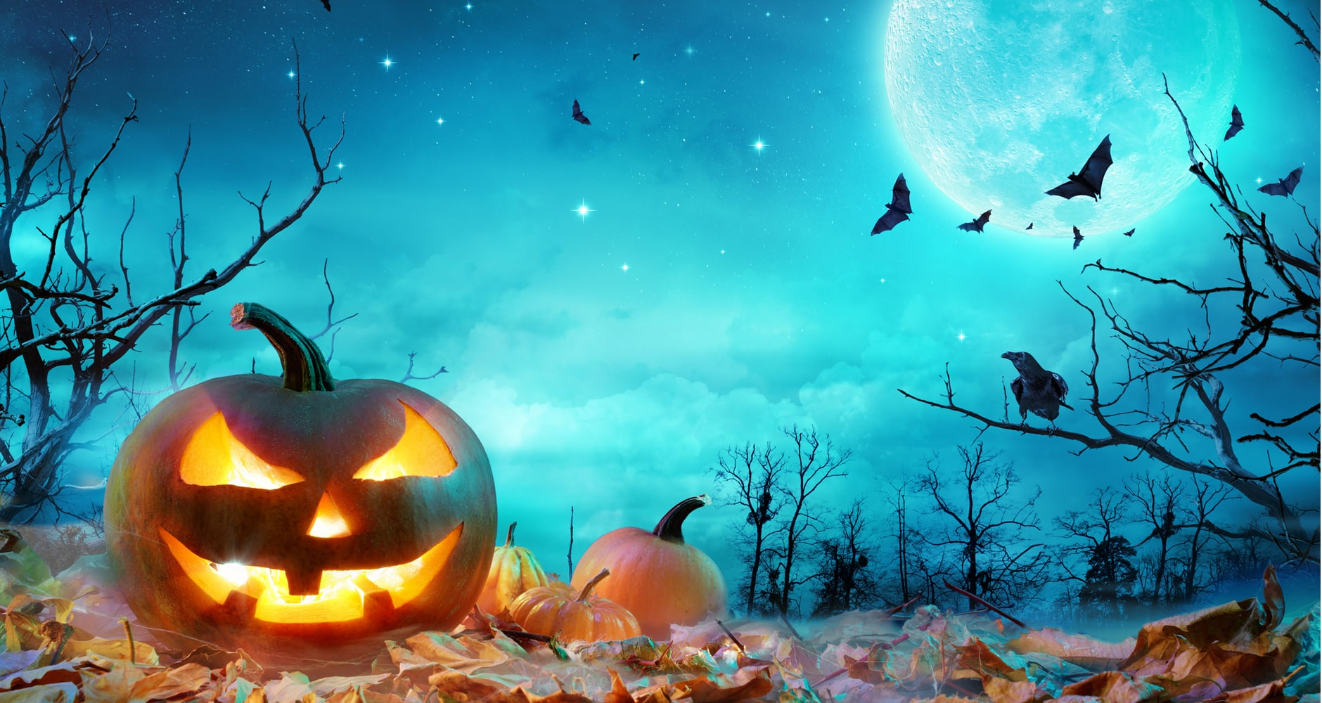 When Will There Be A Halloween Full Moon? (2018)image preview