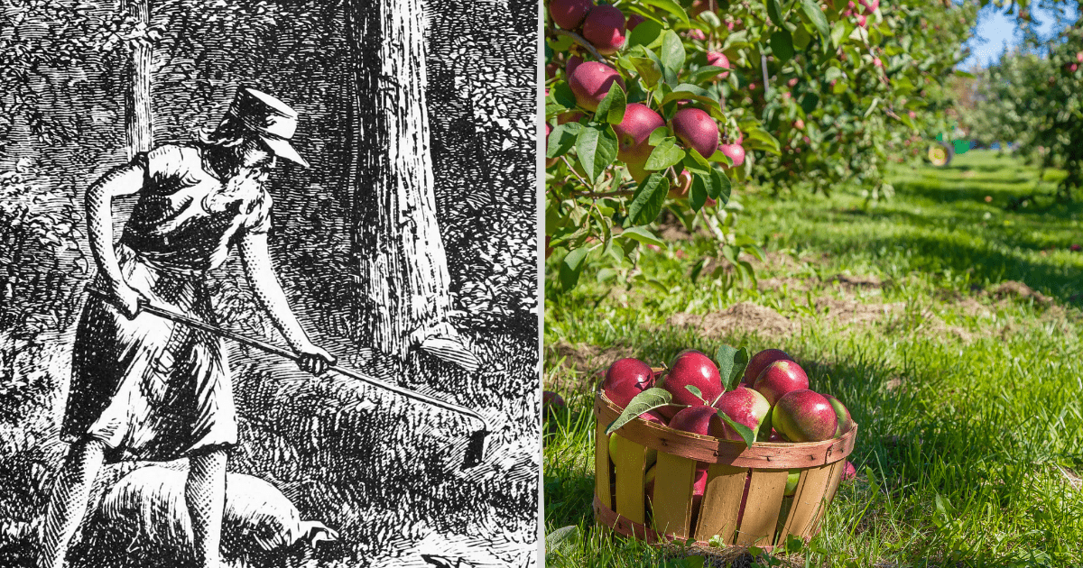 Two tiles, one showing a paint of Johnny Appleseed and the other a basket of apples in an orchard.