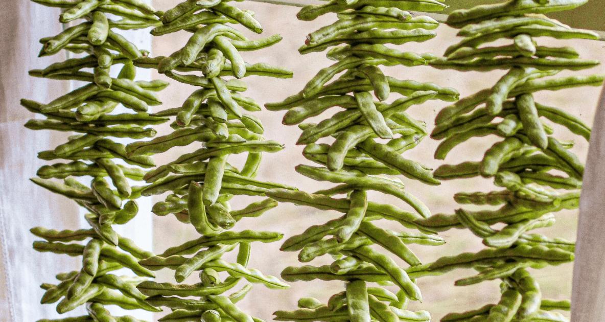 Green Beans - Vegetable