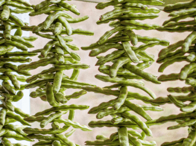 """Dry Your String Beans Into """"Leather Britches"""" featured image"""
