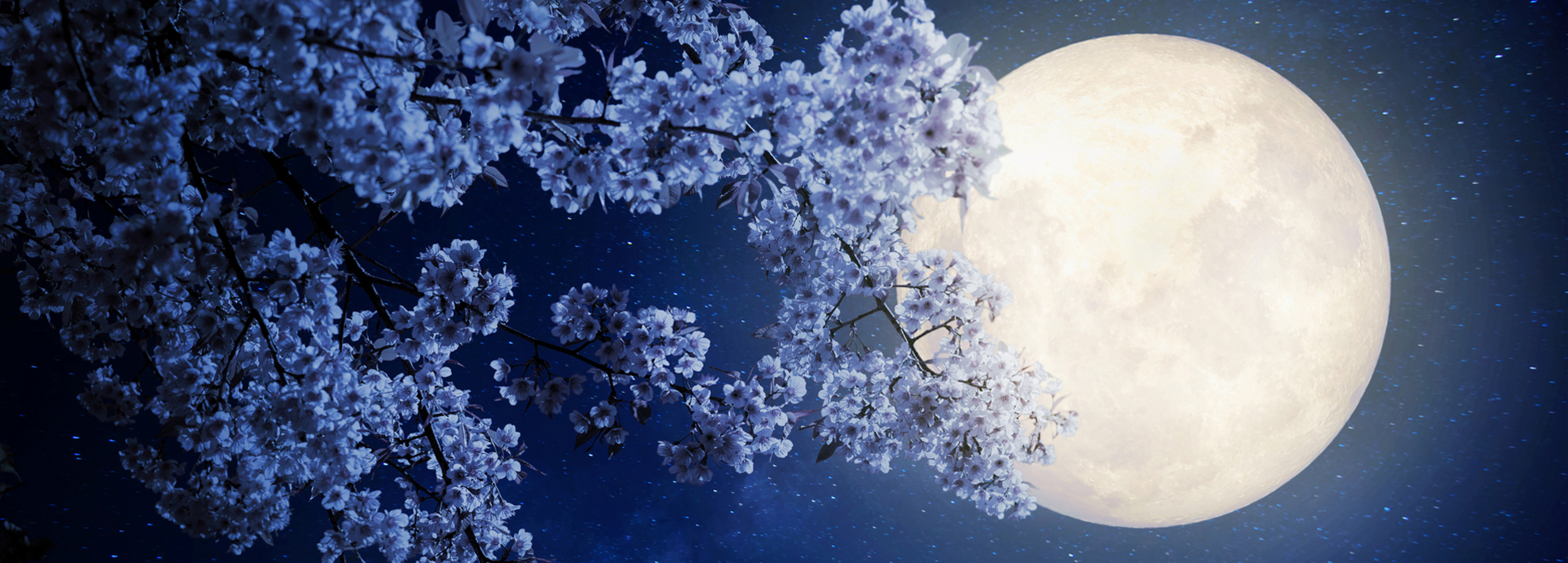 May's Full Flower Moonimage preview