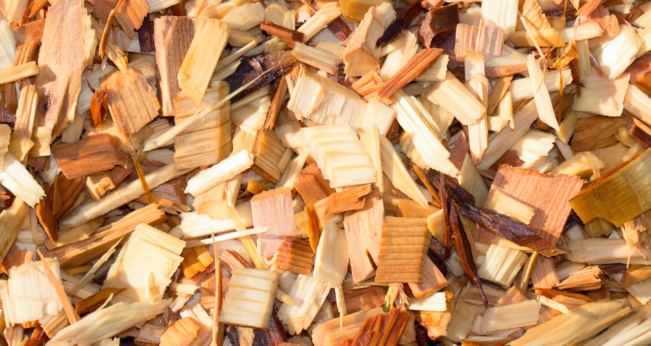 Wood - cedar wood chips