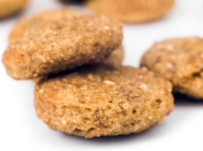 Fleas? Try These Flea-Be-Gone Treats For Your Pet! featured image