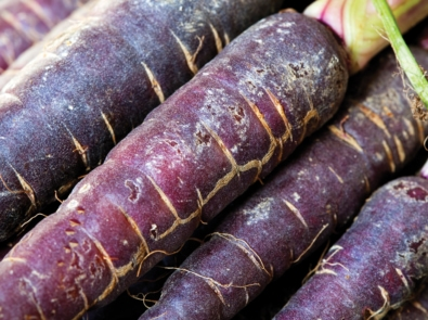 Purple Carrots, Anyone? featured image