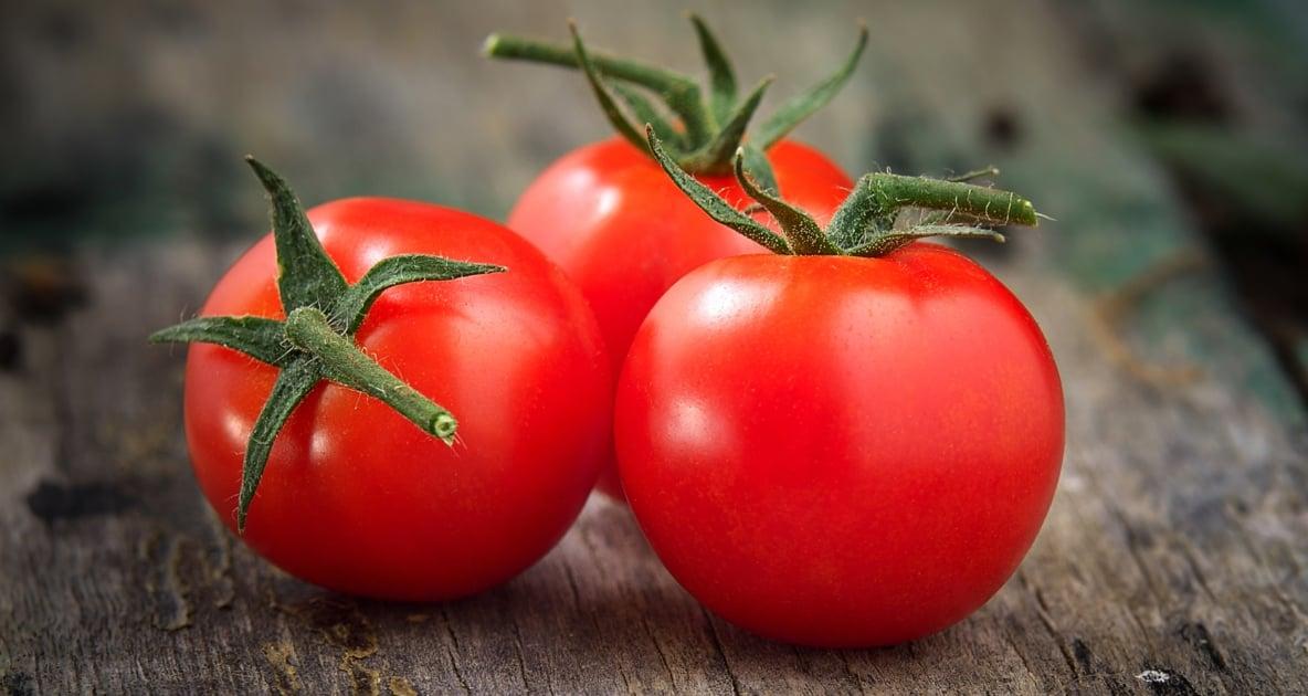 Tomato - Vegetable