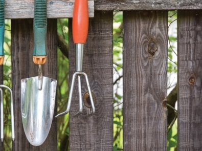 5 Unusual Tools Every Gardener Should Have featured image