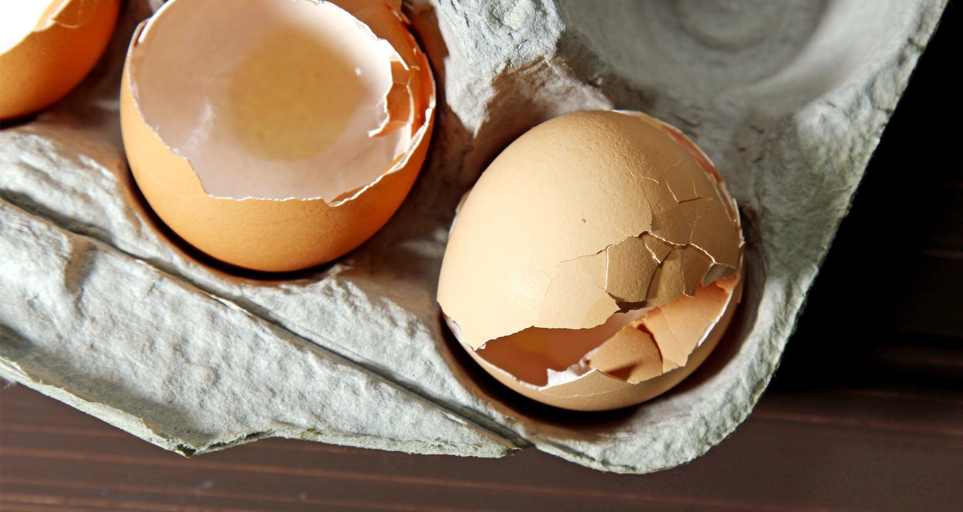use eggshells
