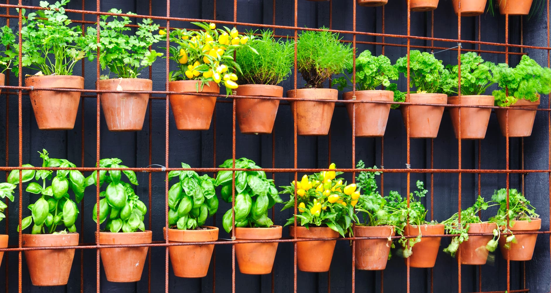 Big Gardening Ideas For Small Spaces   Farmers' Almanac