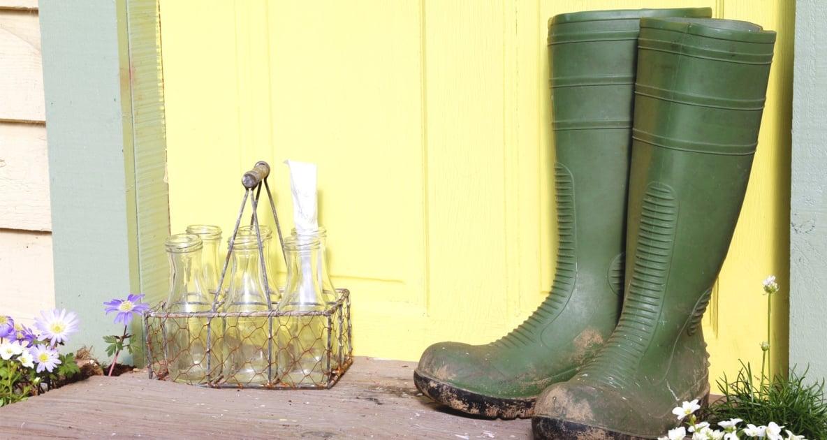 Boot - Wellington boot