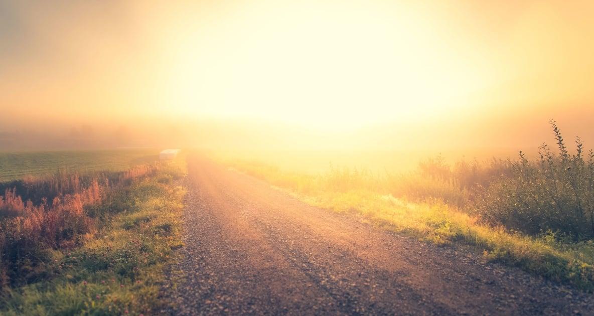 Fog - Sky