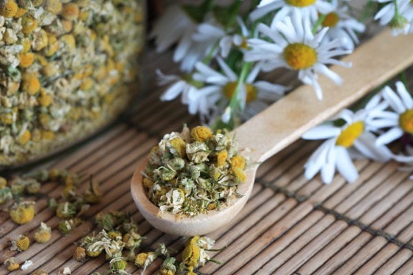 Glass jar with dried camomile near wooden spoon and daisy flowers