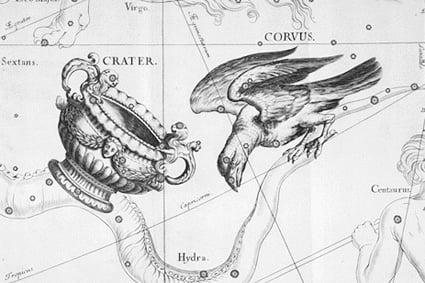 Crows - Constellation
