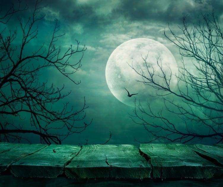 Full moon - Stock photography