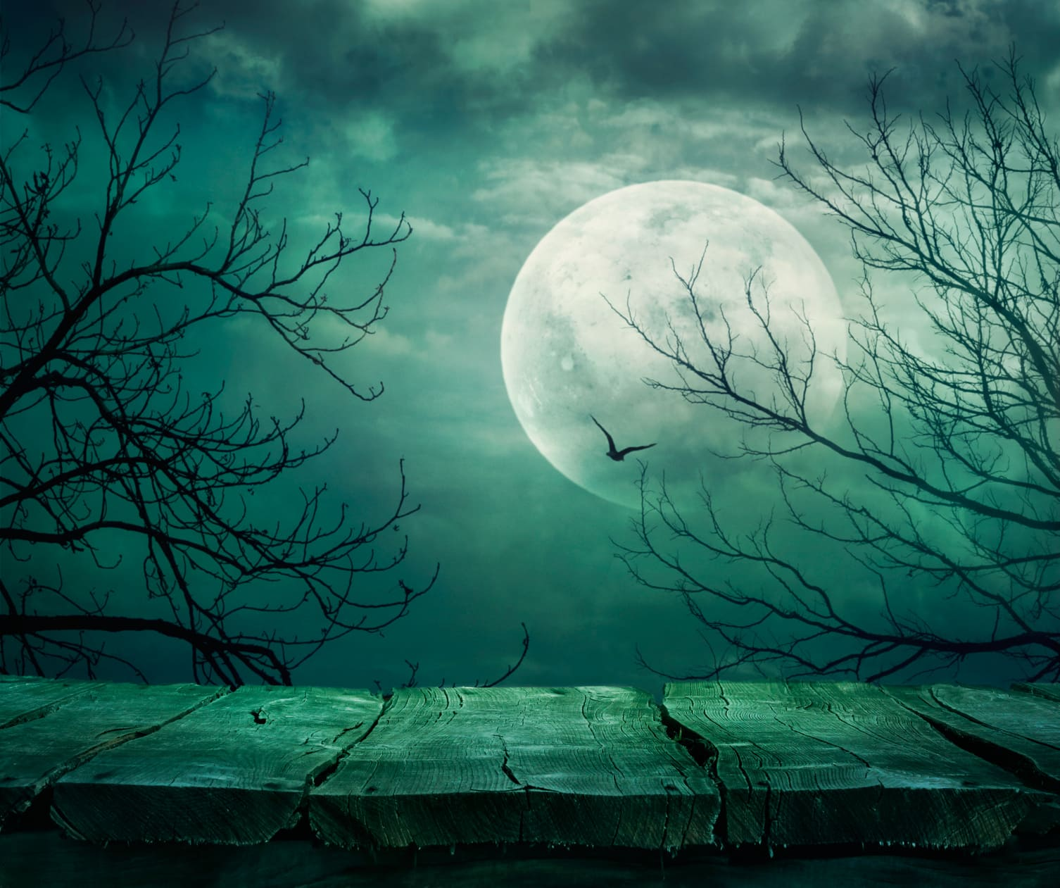 A Rare Halloween Blue Moon in 2020 – Mark Your Calendars!image preview