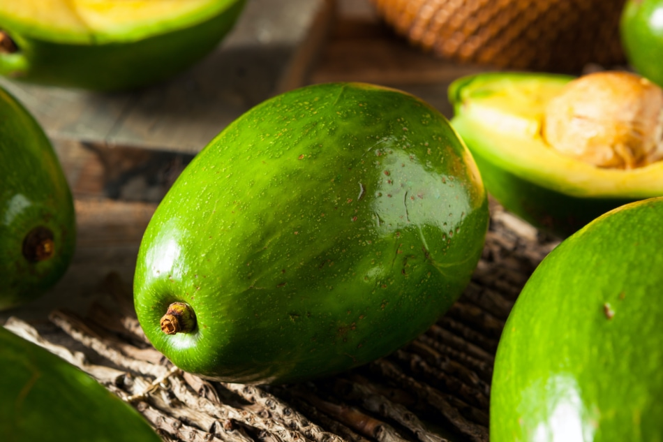 Raw green organic florida avocados, whole and chopped in half.