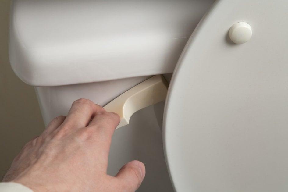 Toilet - Toilet Seat