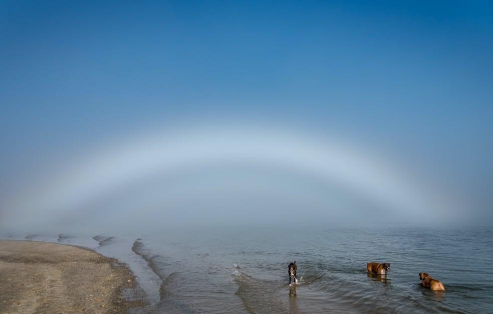 Fog bow - Sea