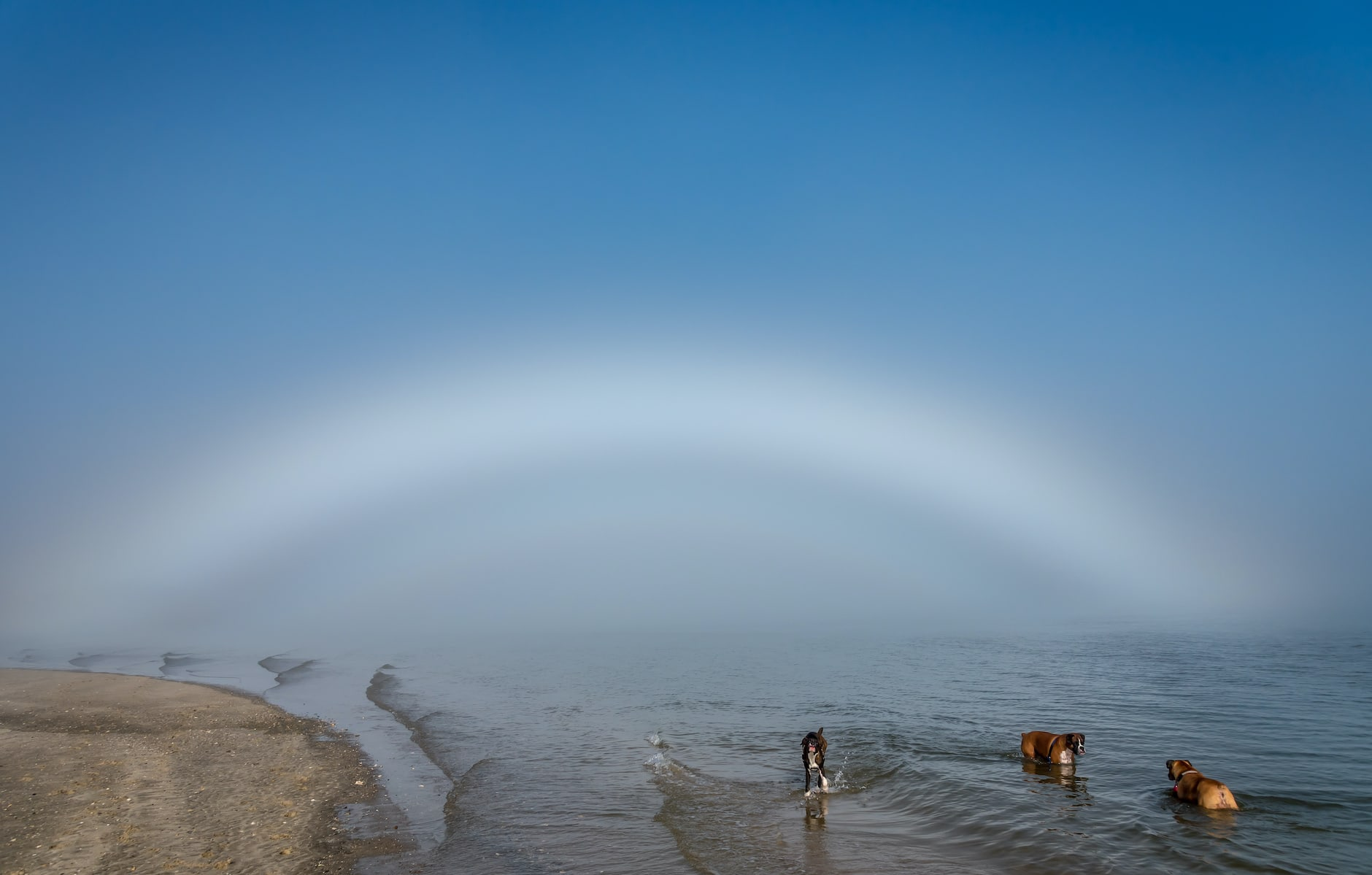 Ever Spot A Ghost Rainbow?image preview