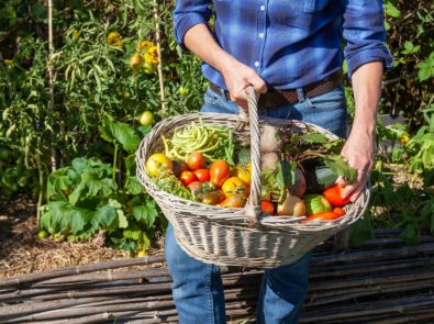 15 Tips On How To Store and Preserve Your Garden Harvest featured image
