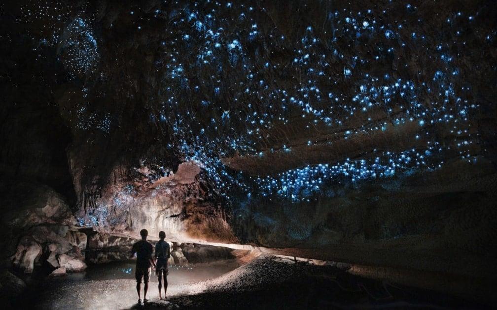 Waitomo Glowworm Caves - Glowworm