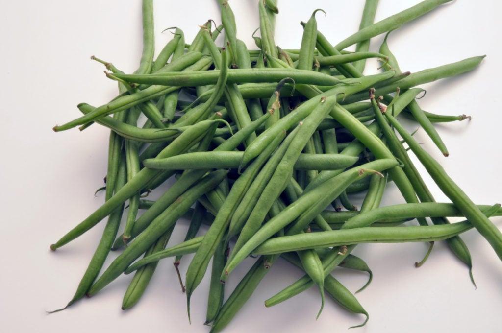 Fresh garden green beans.