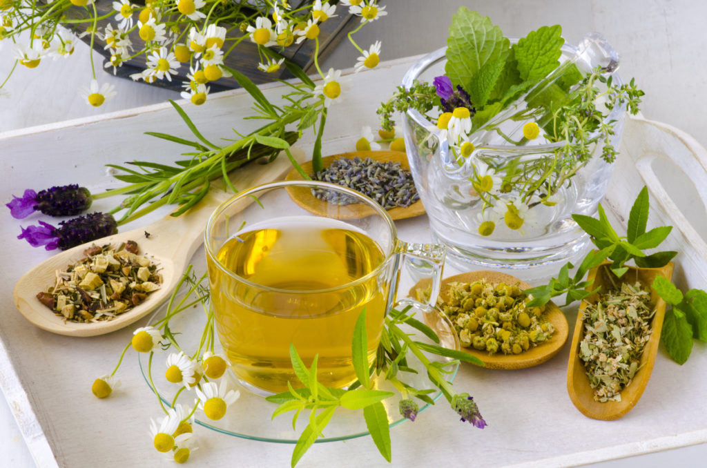 herbs for herbal teas