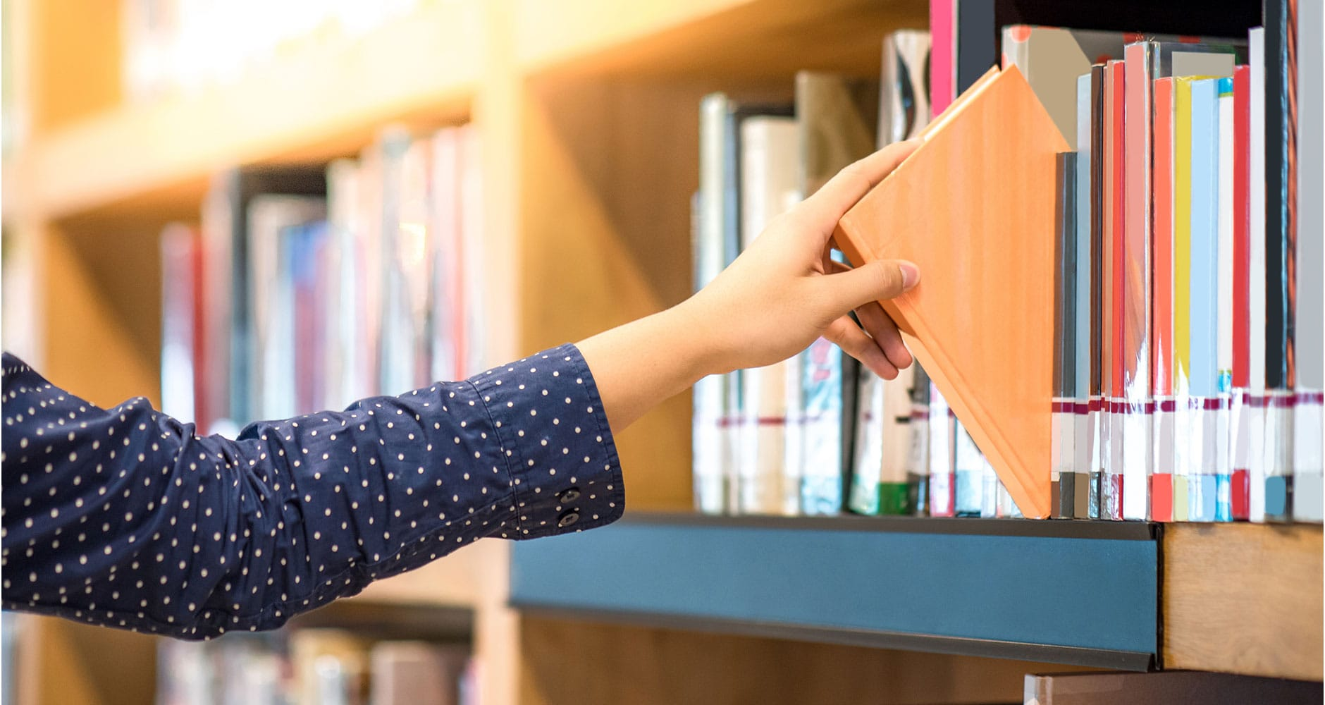 Woman browsing through library books on a shelf